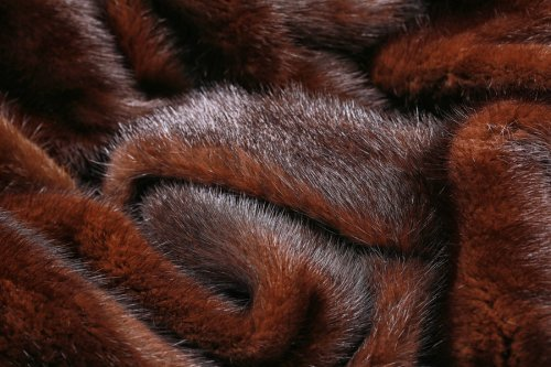 Learn how mink pelts are graded